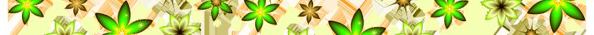 цветущие цветы: названия с фото